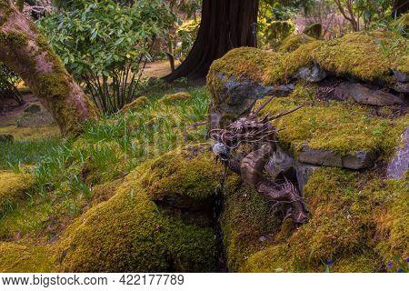 Victoria, Bc, Canada - April 3, 2021: Dragon Fountain, Butchart Gardens