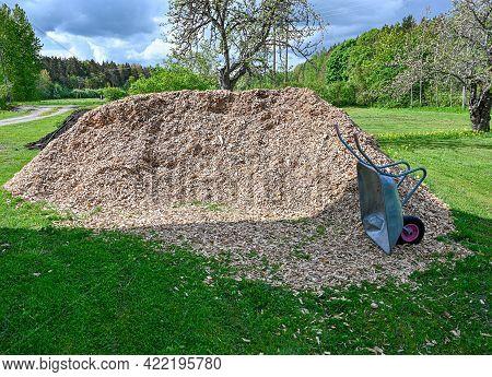 Heap Of Wood Chips And Wheelbarrow In Garden