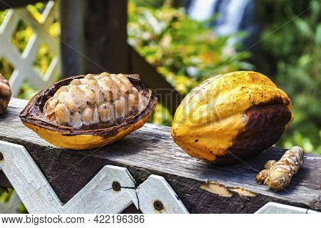 Tropical Fruits Near Concord Falls On The Island Of Grenada. Grenada Is A Country And An Island Loca