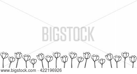 Row Of Contour Tulip Flowers. Vector Hand Drawn Spring Background Isolated. Horizontal Bottom Edging