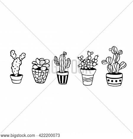 Set Of Cactus Doodles Illustrations. Home Plants In Pots. A Variety Of Outlined Succulents. Vector I