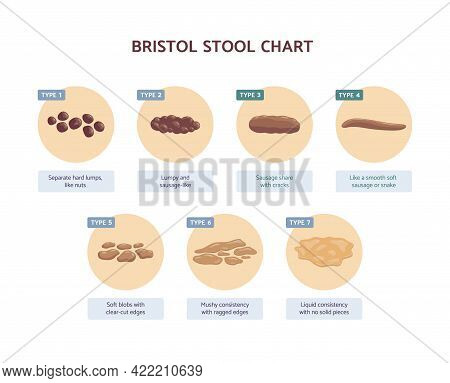 Bristol Stool Chart With Medicine Description Of Human Excrements.