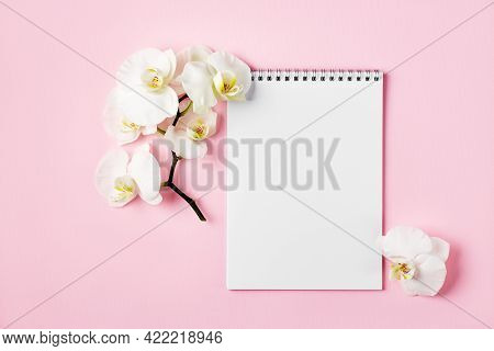 Top View Of Blank Sheet Of Notebook And White Orchid Flower (phalaenopsis), Pink Background. Copy Sp