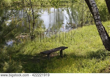 Beautiful Nature. A Wooden Bench With No One On It.