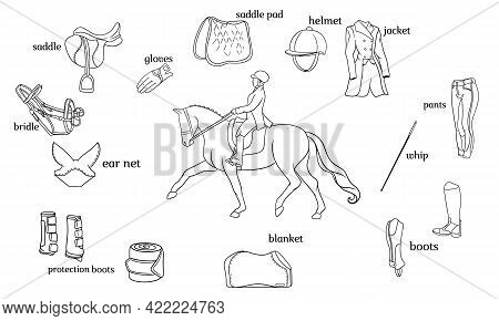 Equestrian Sport Infographics Horse Harness And Rider Equipment In The Center Of A Rider On A Horse