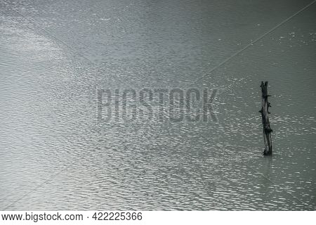 Atmospheric Nature Background With Tree Trunk In Shiny Lake Water Surface With Ripple. One Snag In G