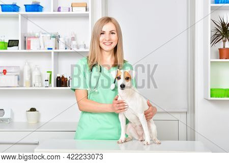 Smiling Veterinarian With Jack Russell Terrier Dog