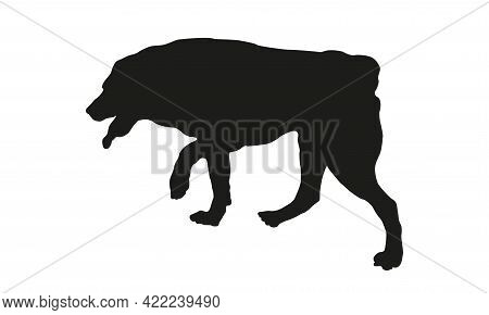 Black Dog Silhouette. Running Central Asian Shepherd Dog Puppy. Pet Animals. Isolated On A White Bac