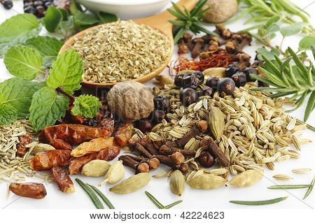 Fresh Flavoring Herbs And Spices