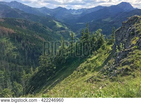 Mountain Landscape With Rocky Cliff And Spruces, Sunny Summer Day. View From Mount Nosal, Tatra Moun