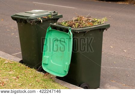 Australian Garbage Wheelie Bins With Green Lids For Green Garden Waste Lined Up On The Street For Co