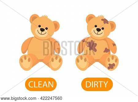 Dirty And Clean Teddy Bear Plush Toys. Concept Of Children Learning Opposite Adjectives Clean And Di