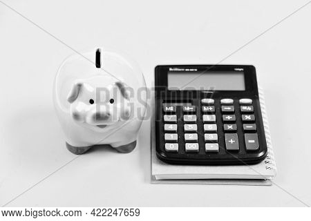 Save Money. Banking Account. Earn Money Salary. Money Budget Planning. Calculate Profit. Piggy Bank