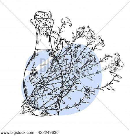 Flax Flower Hand Drawn Sketch. Bottle With Flax Essential Oil. Cosmetic, Perfumery And Medical Plant