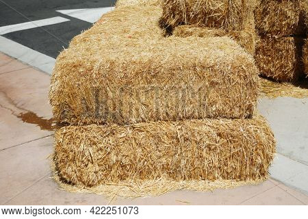 Piled stacks of dry straw collected for animal feed. Dry baled hay bales stack. Hay Bales piled up for Seating and barricades.