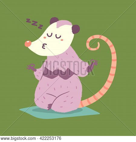 Cute Possum In Yoga Lotus Pose Vector Cartoon Character Isolated On Background.