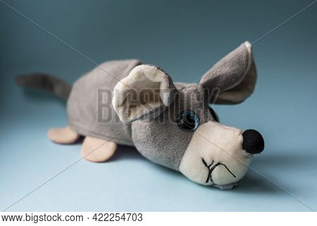 Plush Toy Gray Dog On A Blue Background. Indoors, Day Light Front View.