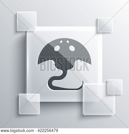 Grey Stingray Icon Isolated On Grey Background. Square Glass Panels. Vector