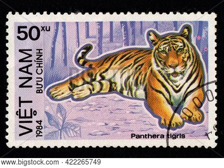 Cuba - Circa 1983: Panthera Tigris On Vietnamese Postal Stamp. Vietnam Postage Stamp Featuring Tiger