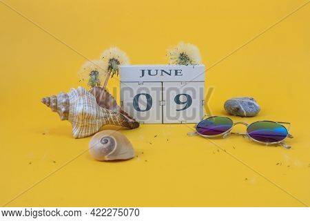 Calendar For June 9: Cubes With The Numbers 0 And 9, The Name Of The Month Of June In English, Shell