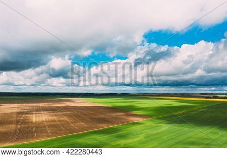 Countryside Rural Green Field Landscape With Young Wheat Field And Empty Ground In Spring Day. Agric