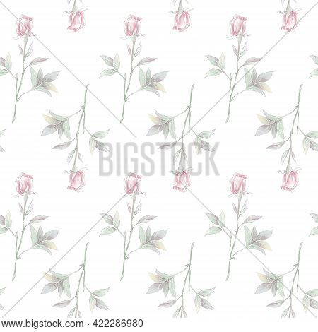 Seamless Pattern. Delicate Roses. For Digital Printing
