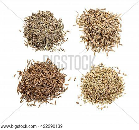 Top View Of Various Cumin Like Seeds (black Cumin, Cumin, Caraway, Indian Cumin) On White Background