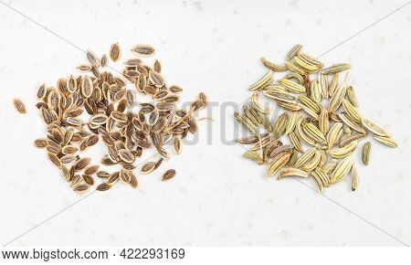 Two Pinches Of Dill And Fennel Seeds On Gray Ceramic Plate