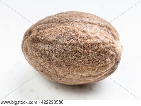 Single Whole Nutmeg Fruit Close Up On Gray Ceramic Plate