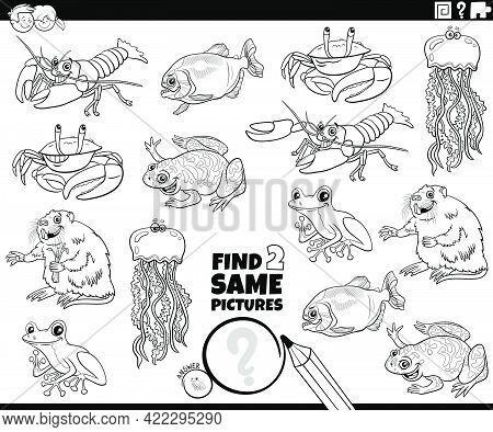 Black And White Cartoon Illustration Of Finding Two Same Pictures Educational Game With Comic Animal