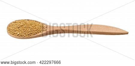 Granulated Dried Yeast In Wooden Spoon Isolated On White Background