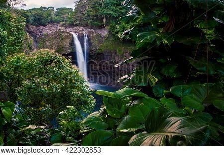 Rainforest With A Waterfall On The Big Island Hawaii