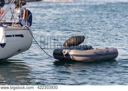 Inflatable Boat From The Stern Of The Yacht. Yacht In The Parking Lot With A Boat Tied Up On The Ste
