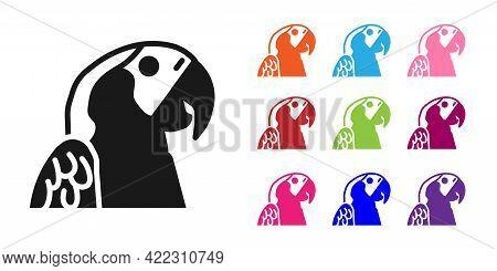Black Macaw Parrot Bird Animal Icon Isolated On White Background. Animal Symbol. Set Icons Colorful.