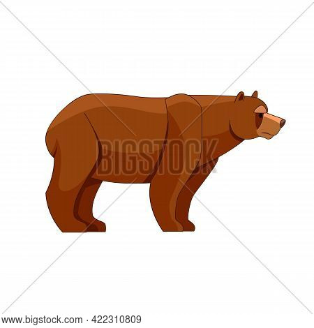 A Bear Looking. Cartoon Character Of Big Mammal Animal. Wild Forest Creature With Brown Fur. Vector