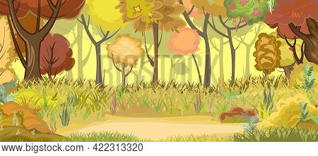 Autumn Forest Glade. Green, Yellow And Red Trees. Edge With Grass. Glade. Beautiful And Graceful Tre