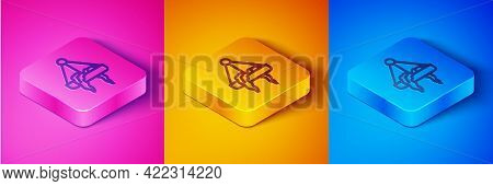 Isometric Line Plant In Hanging Pot Icon Isolated On Pink And Orange, Blue Background. Decorative Ma