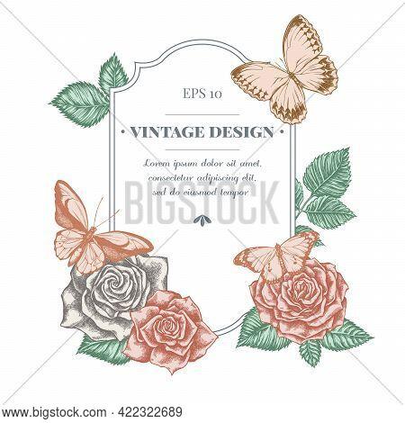 Badge Design With Pastel Wallace S Golden Birdwing, Jungle Queens, Plain Tiger, Roses Stock Illustra