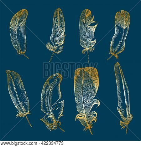 Set Realistic Sketch Of Bird Feather On Isolated Background. Detailed Ink Line Pen Clip Art, Golden