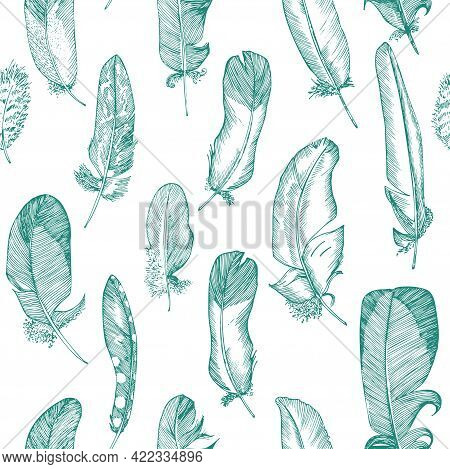 Seamless Pattern Realistic Sketch Of Bird Feather On Isolated Background. Detailed Ink Line Pen Clip