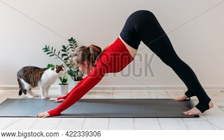Girl In Red Sportswear With Cute Funny Cat Practicing Yoga At Home. Indoor And Outdoor Workout. Spor