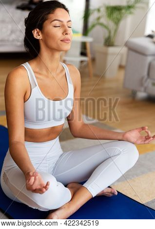 Beautiful Young Fit Woman Doing Exercises At Home. Fitness, Healthy Lifestyle, Sport Concept