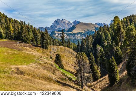 Powerful ridge of rocks on the horizon. Val Gardena, Italy. Alpe di Siusi is charming plateau in the Dolomites. Beautiful sunny day for hiking and taking photos.