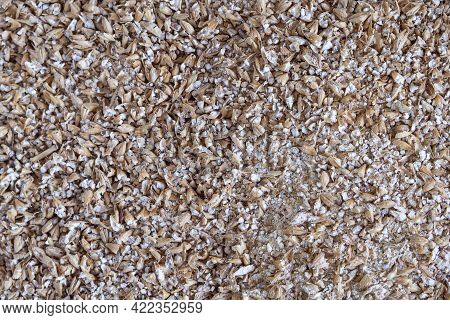 Full Frame Photo Of Grinded Malted Barley For Making Craft Beer. Process Of Making Home Beer From Ma