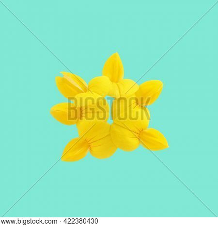 Yellow flower organic alien shape on bright green square background. Trendy minimal abstract concept. Trendy creative art on modern vivid color