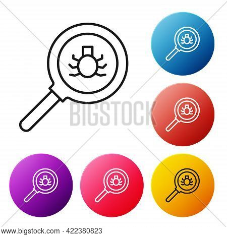 Black Line Flea Search Icon Isolated On White Background. Set Icons Colorful Circle Buttons. Vector