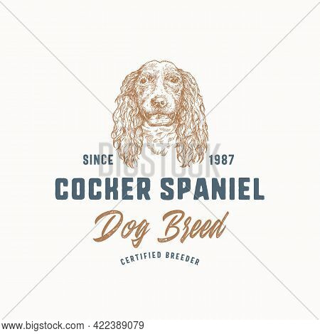 Dog Breeder Badge Or Logo Template. Hand Drawn Cocker Spaniel Breed Face Sketch With Retro Typograph
