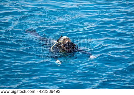 Woman In Scuba Swims On Blue Sea Surface After Diving. Water Sports And Entertainment, Scuba Diving