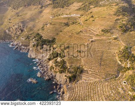 Aerial View On Banana Plantations Terraces On The Slopes Of Mountains At Mediterranean Near The Anci