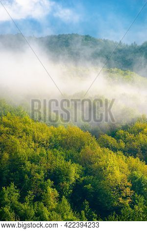 Mountain Landscape On A Foggy Morning. Beautiful Nature Background In Spring. Scenic Outdoor Scenery